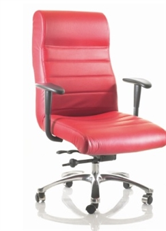 Excelsior Executive Bariatric Swivel Chair