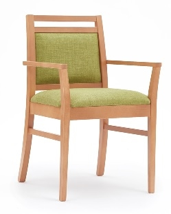 Dazio Dining Chair